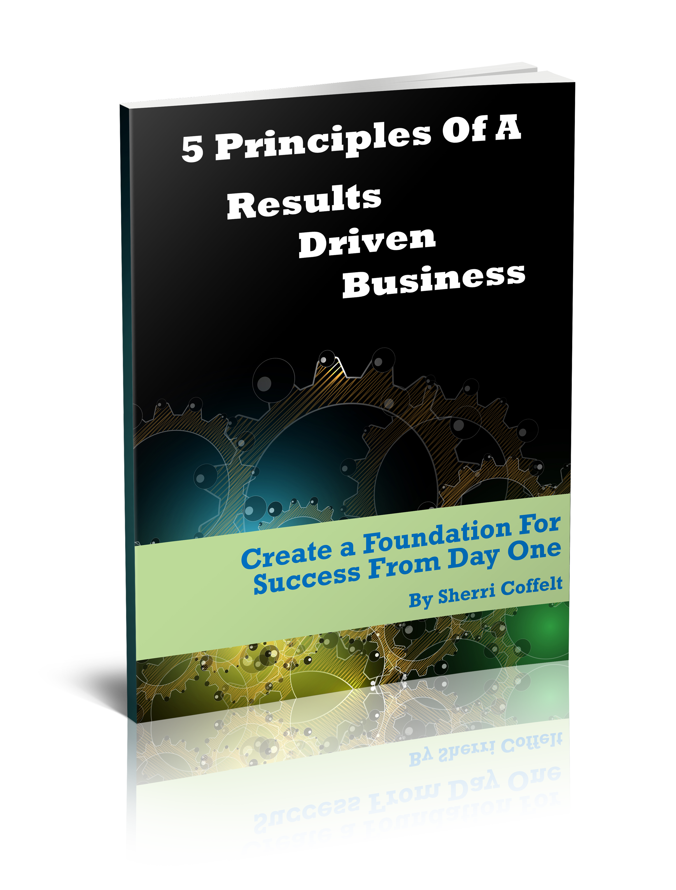 5 Principles Book Cover